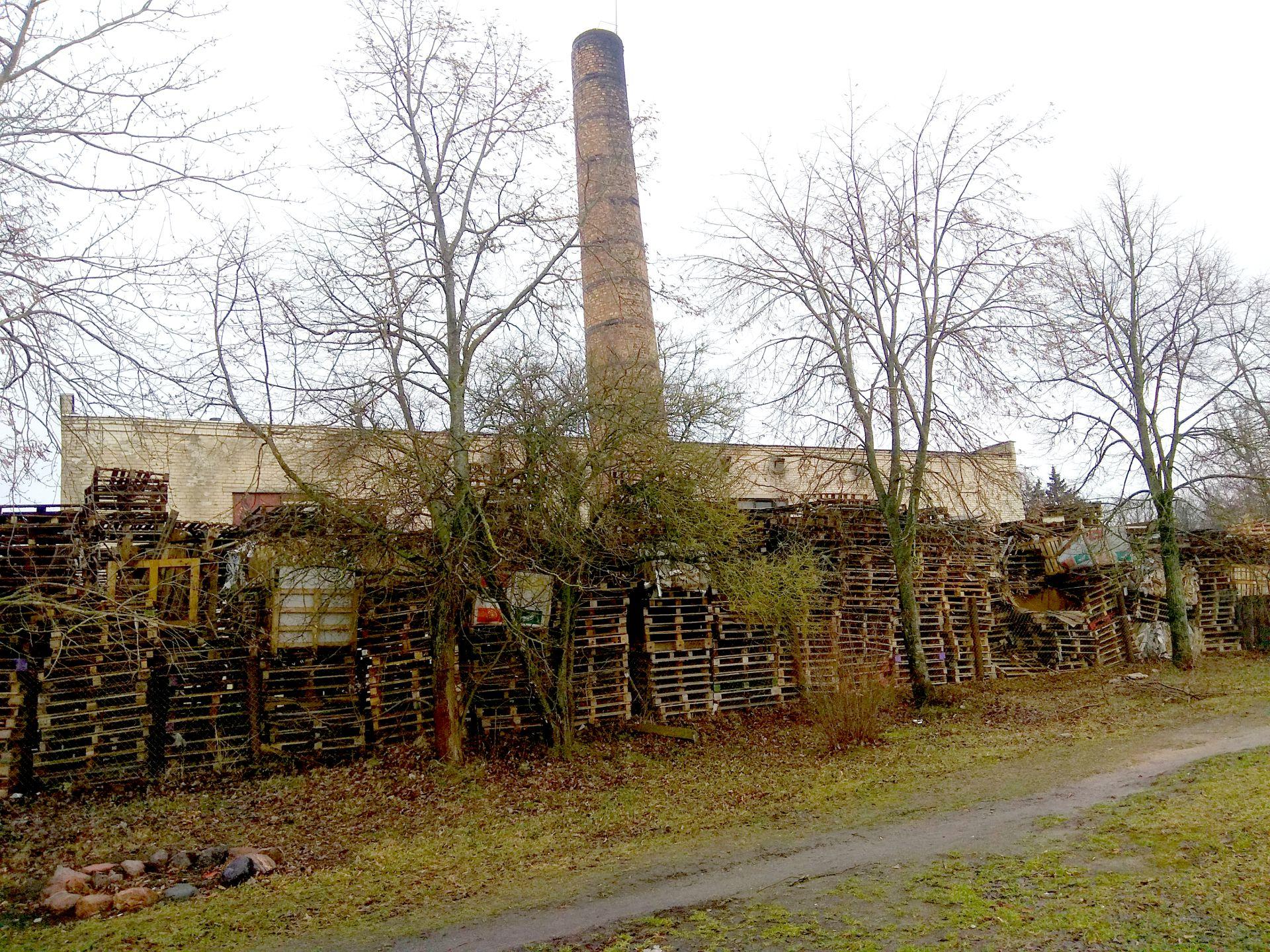 Vilainių seniūnijos Lančiūnavos kaimo katilinės kaimynystėje gyvenantys vietos gyventojai skundžiasi, kad dūmai iš katilinės teršia aplinką. / Dimitrijaus Kuprijanovo nuotr.
