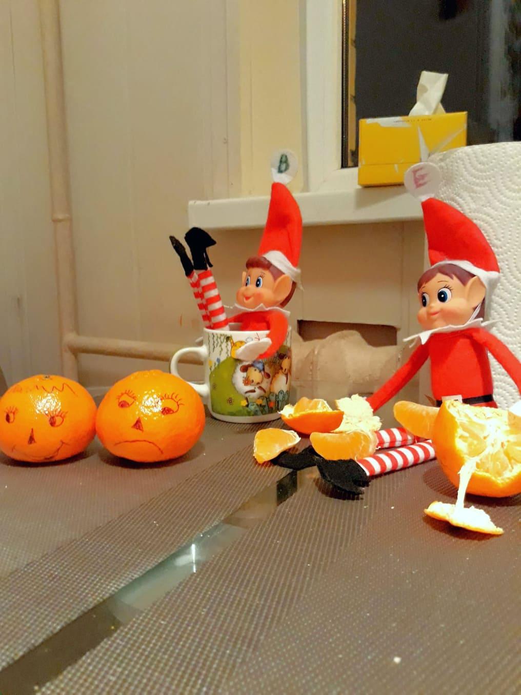 Gražinos namuose apsigyvenę elfai nebuvo labai išdykę. Štai jie užklupti bevalgantys mandarinus. / Asmeninio archyvo nuotr.