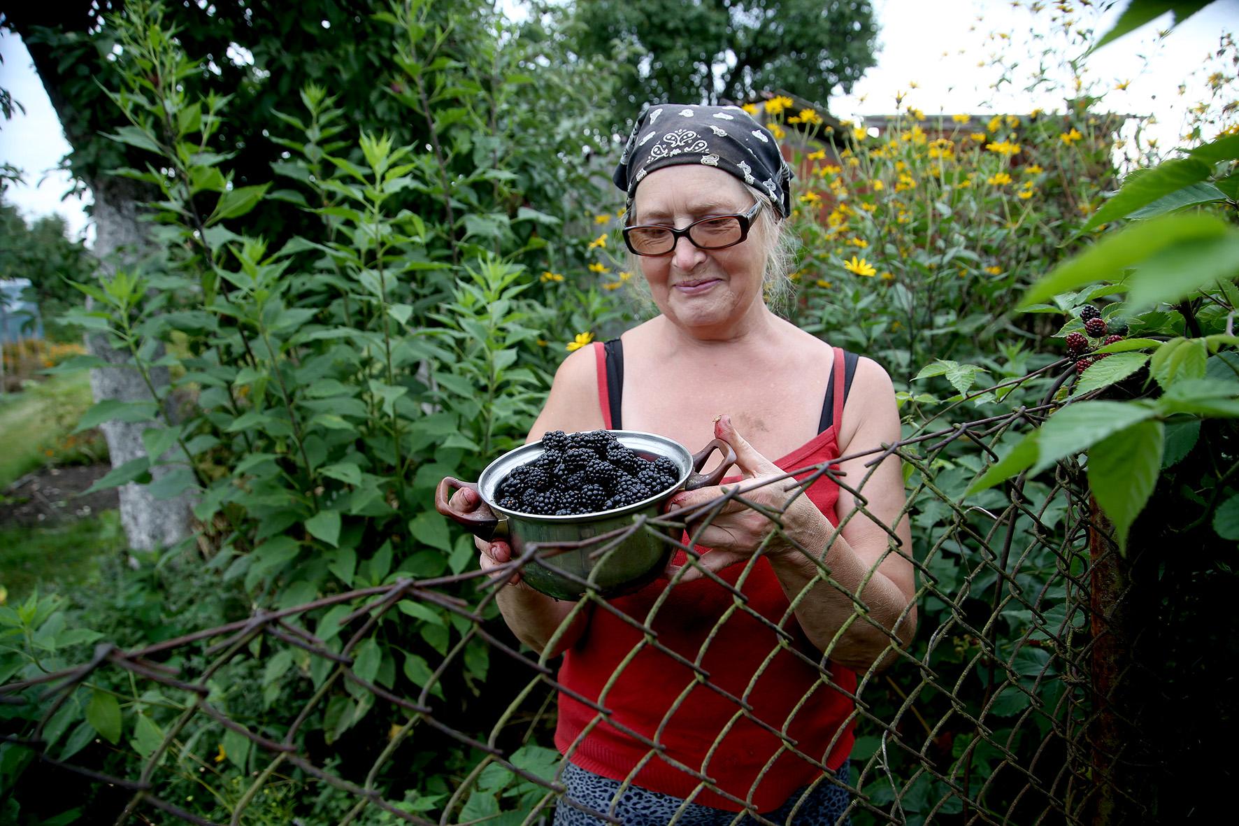 Netoliese išvystame ir dar vieną moterį, skinančią gervuoges. Tai sodininkė Vitalija. A. Barzdžiaus nuotr.