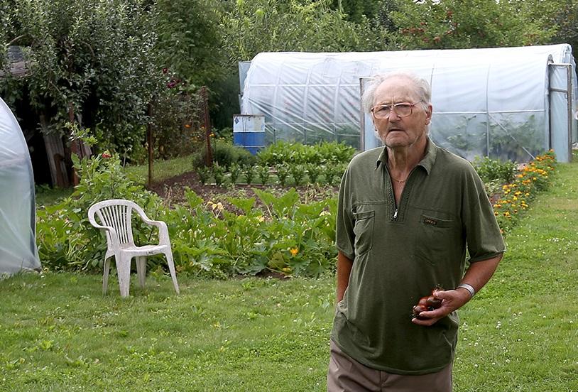 Pasivėžinę po sodus sutinkame poną Gediminą. Senjoras čia leidžia visas savo vasaras, o atvažiuoja jis čia net iš Panevėžio. A. Barzdžiaus nuotr.