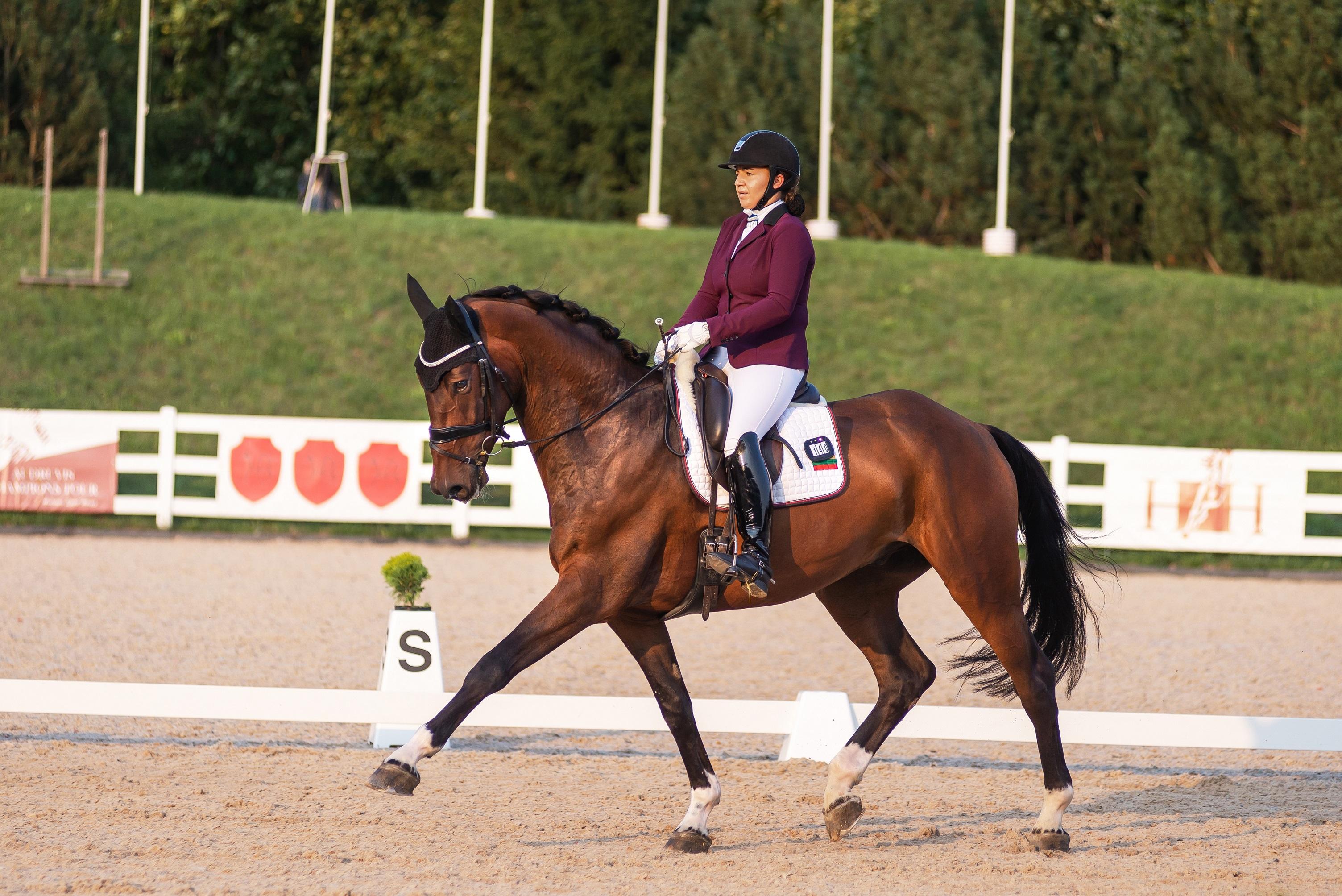 """Čia – """"MG Horses"""" išveistas žirgas LARGO II MG. Jis pirmasis iš Lietuvoje išveistų ir užaugintų žirgų, kuris pasaulio čempionato kvalifikacijoje surinko net 8,7 balų už risčią."""